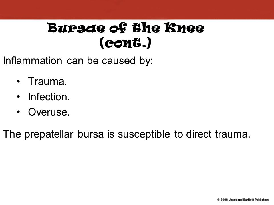 Bursae of the Knee (cont.)