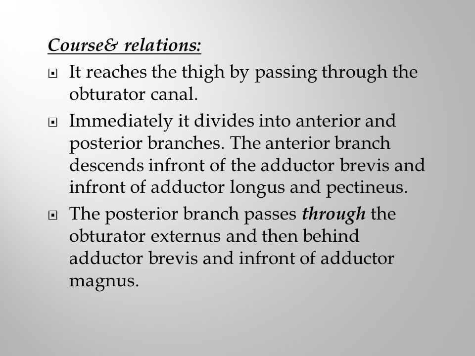 Course& relations: It reaches the thigh by passing through the obturator canal.