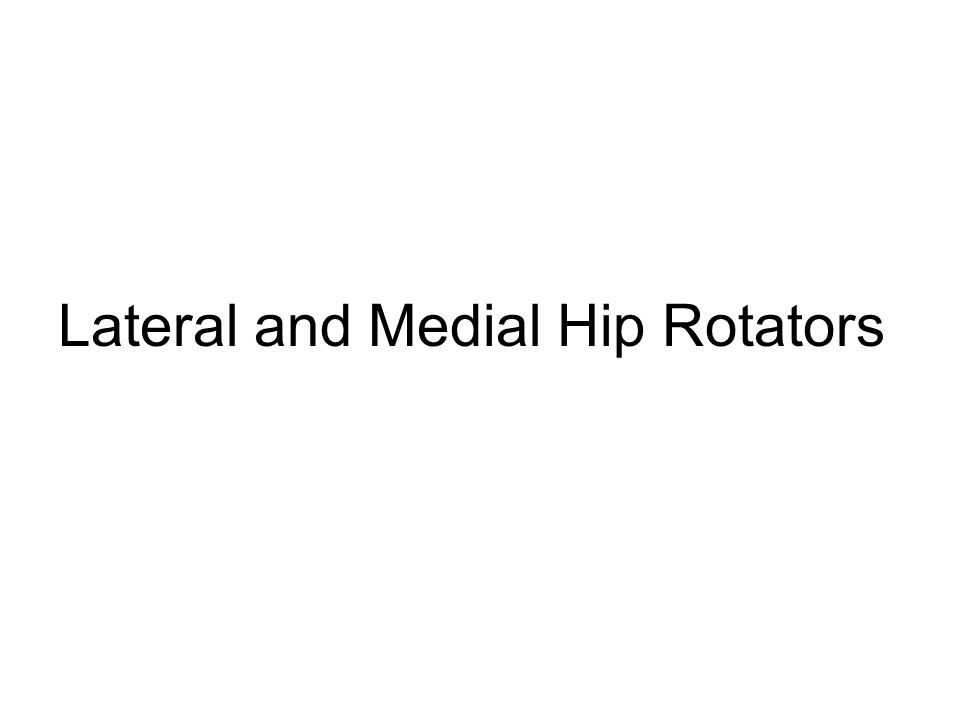 Lateral and Medial Hip Rotators