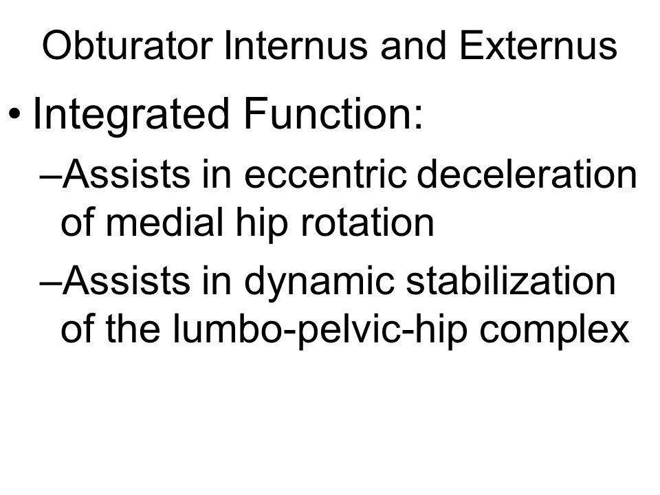 Obturator Internus and Externus