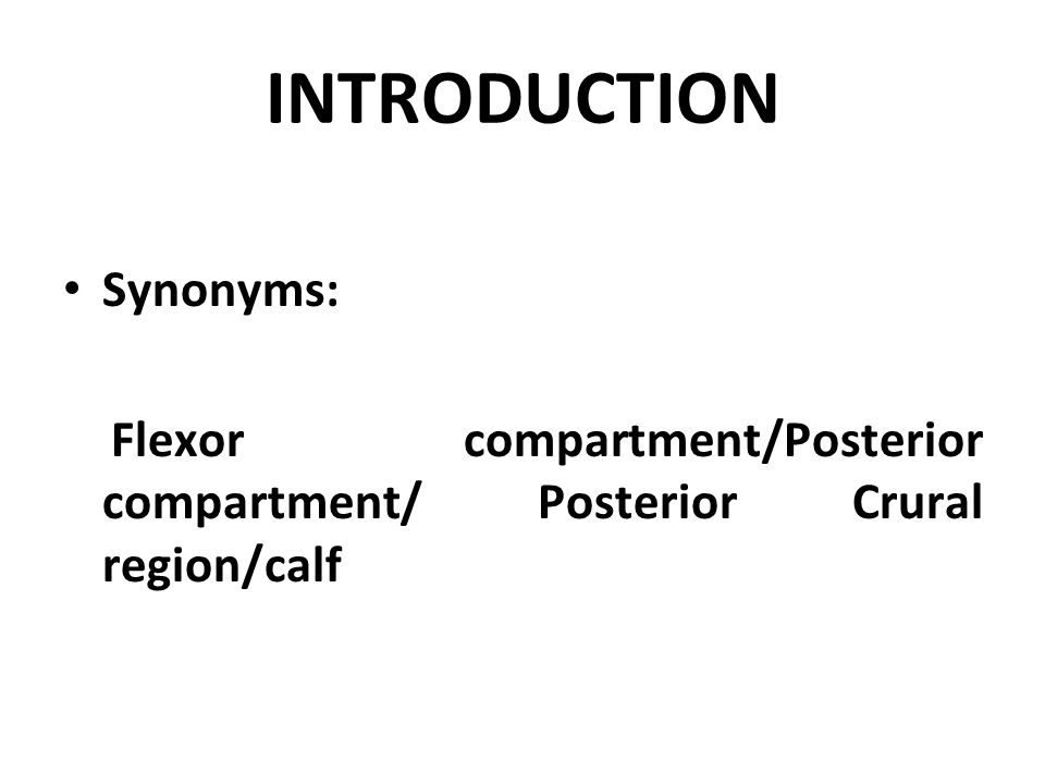 INTRODUCTION Synonyms: