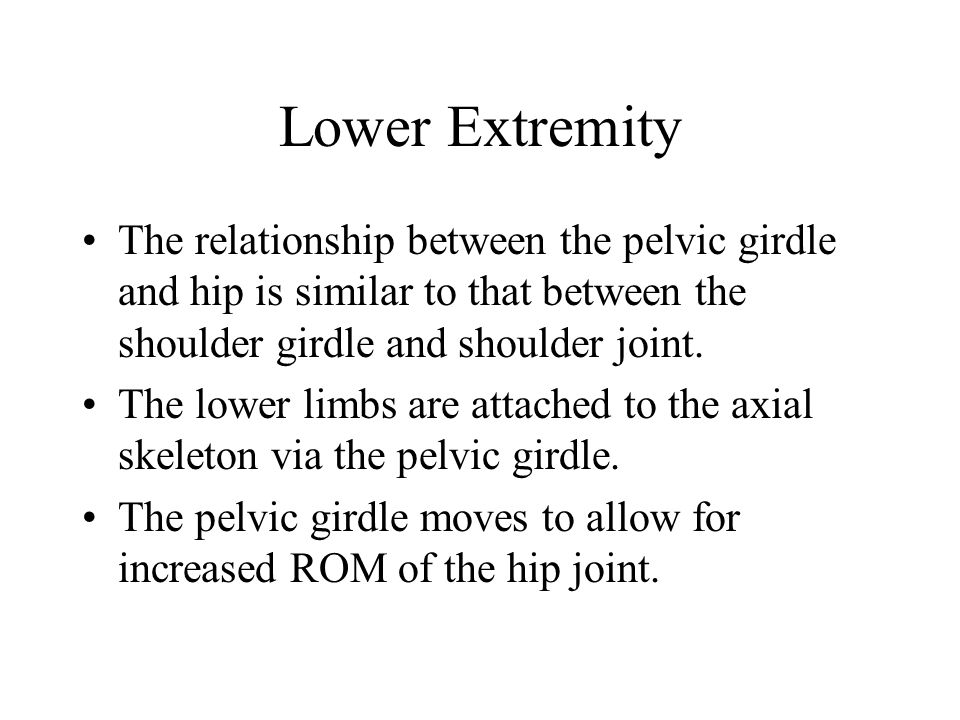 Lower Extremity The relationship between the pelvic girdle and hip is similar to that between the shoulder girdle and shoulder joint.