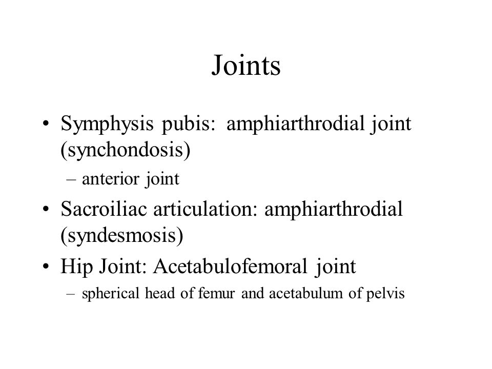 Joints Symphysis pubis: amphiarthrodial joint (synchondosis)