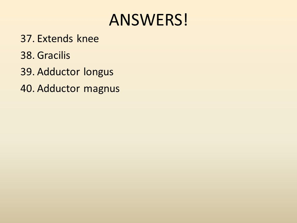 ANSWERS! Extends knee Gracilis Adductor longus Adductor magnus