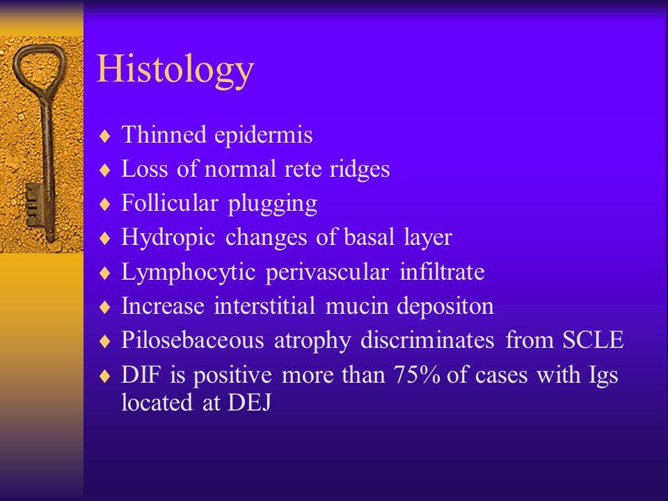 Histology Thinned epidermis Loss of normal rete ridges
