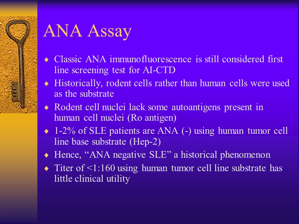 ANA Assay Classic ANA immunofluorescence is still considered first line screening test for AI-CTD.