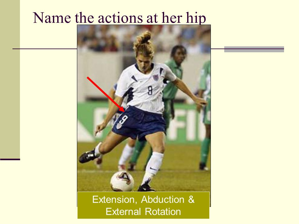 Name the actions at her hip