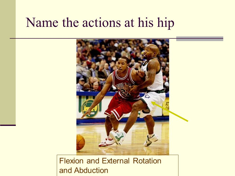Name the actions at his hip