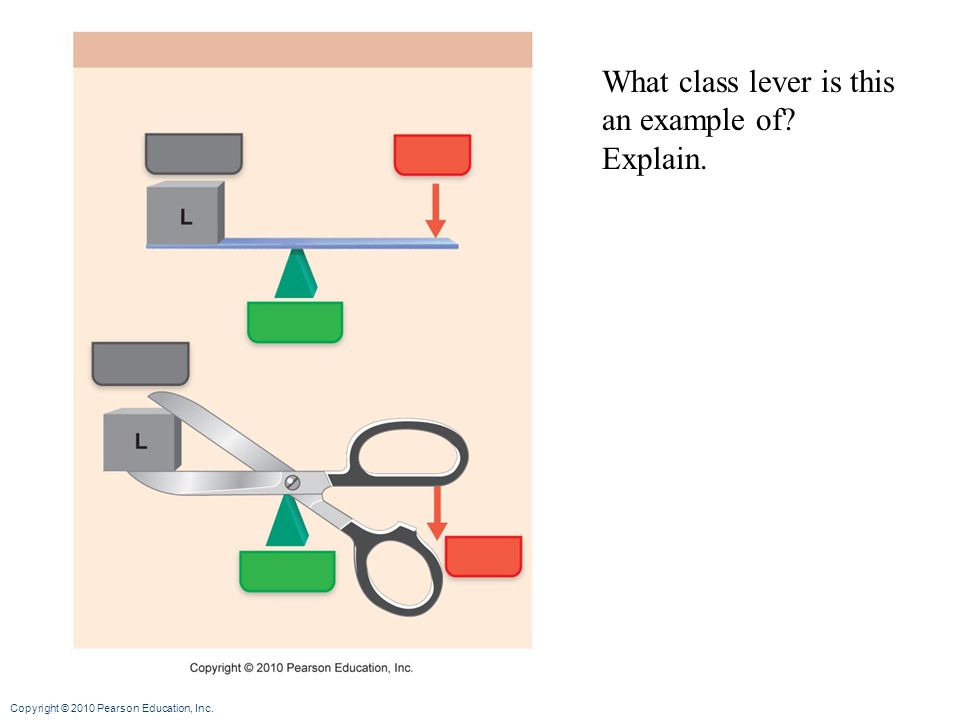What class lever is this an example of Explain.