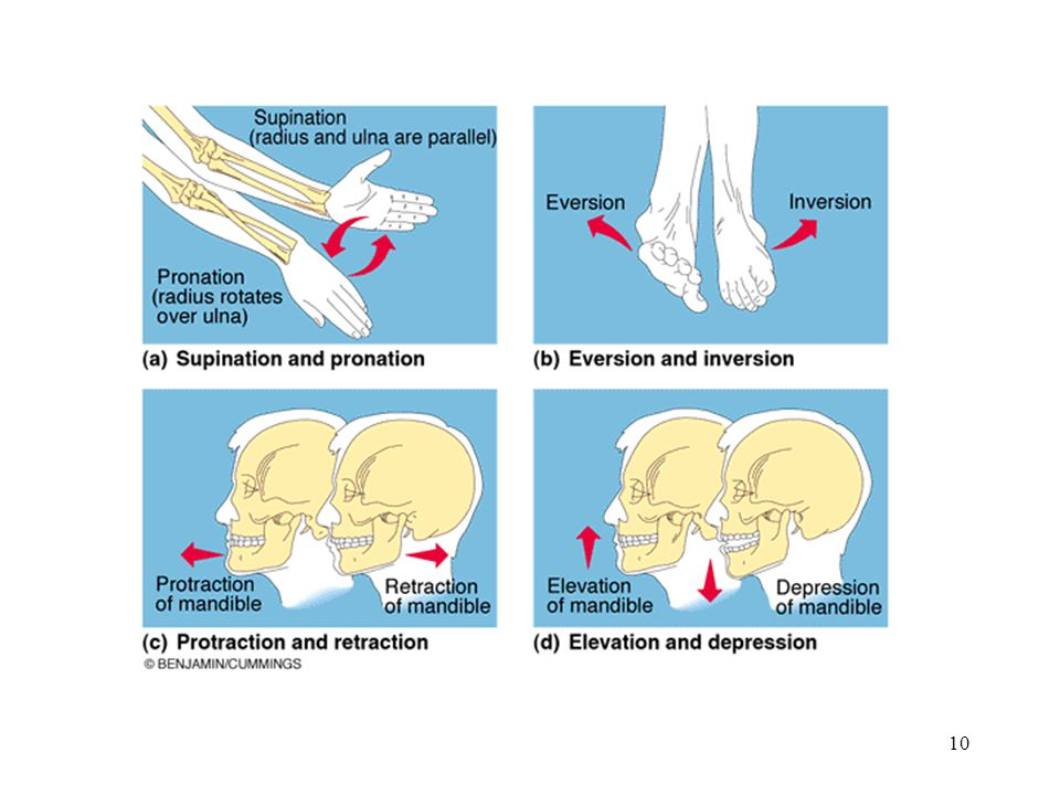 Several movements are shown on this slide