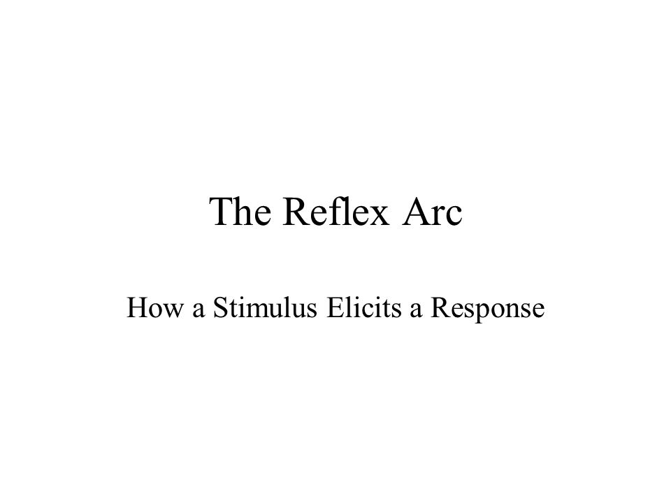 How a Stimulus Elicits a Response