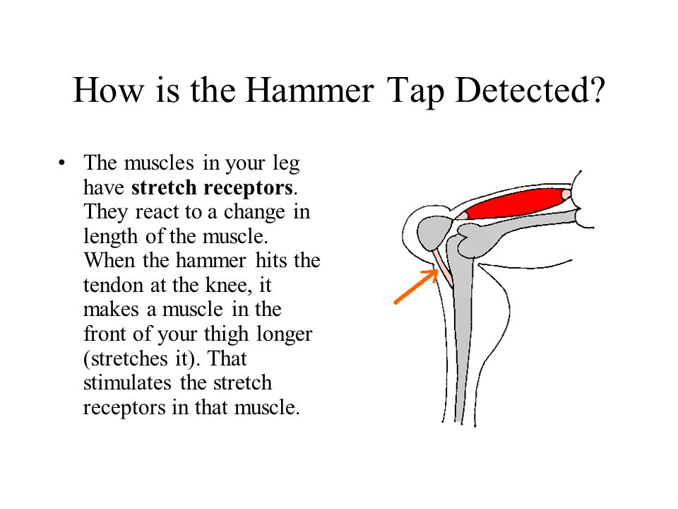 How is the Hammer Tap Detected