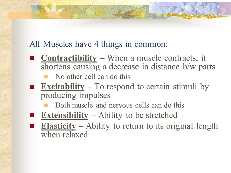 All Muscles have 4 things in common: