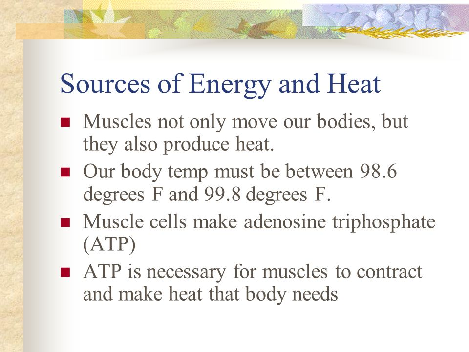 Sources of Energy and Heat
