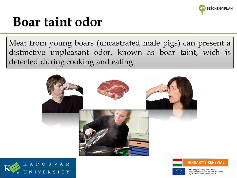 Boar taint odor