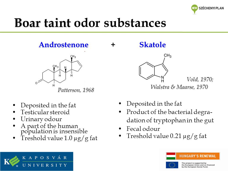 Boar taint odor substances