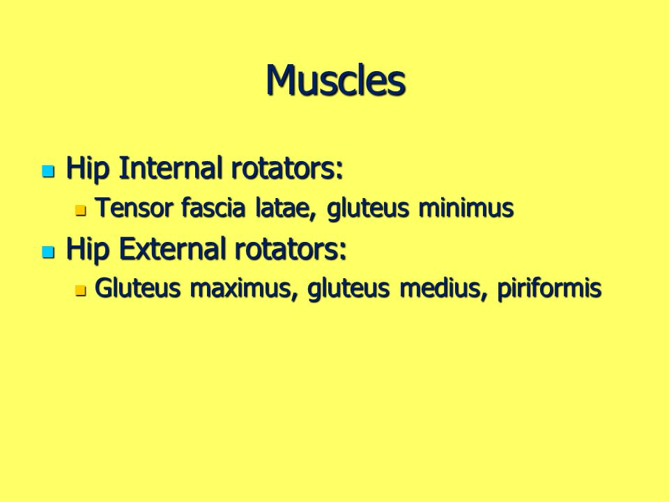 Muscles Hip Internal rotators: Hip External rotators: