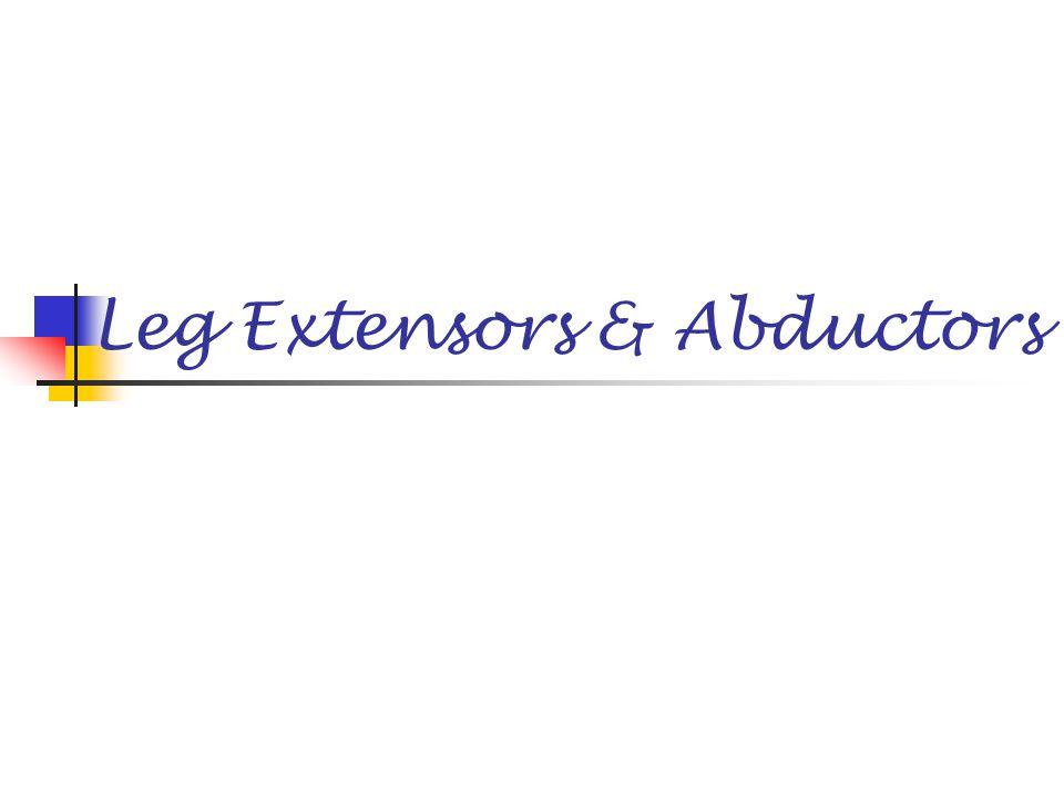 Leg Extensors & Abductors