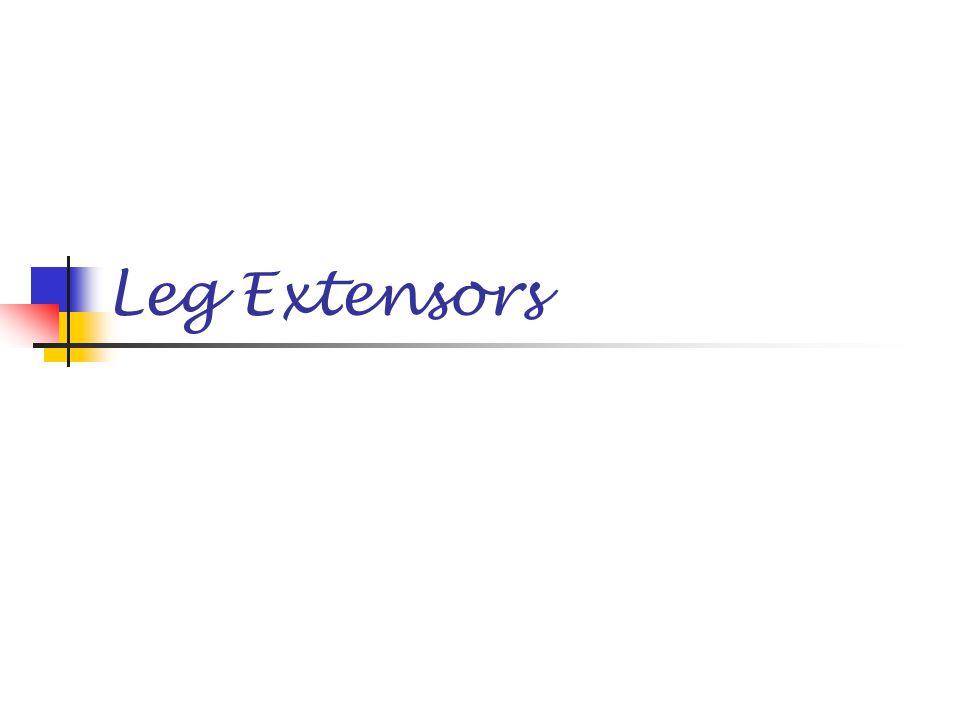 Leg Extensors