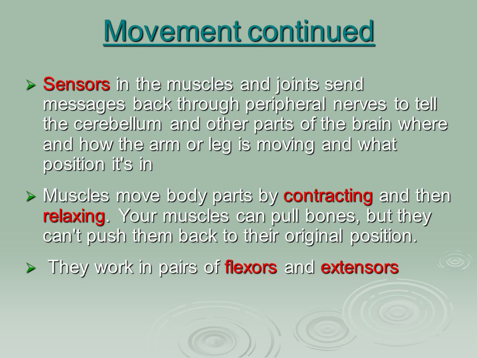 Movement continued