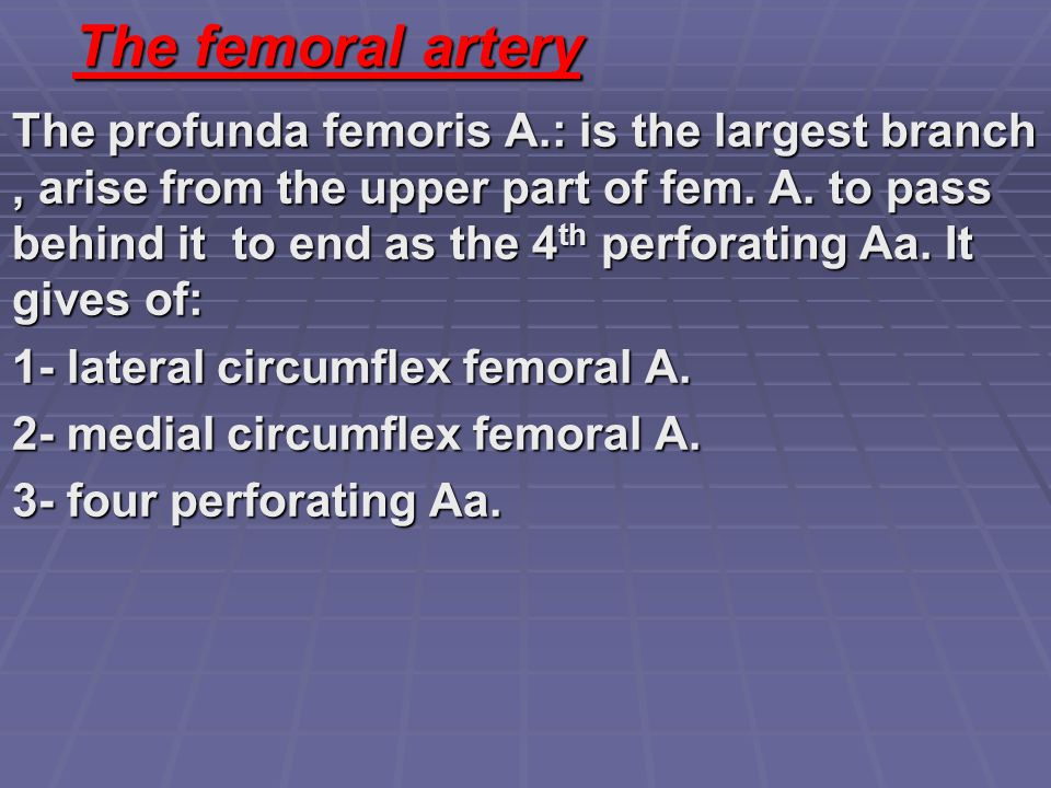 The femoral artery