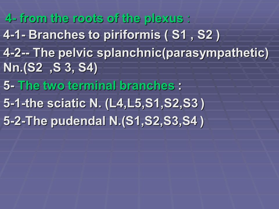 4- from the roots of the plexus :