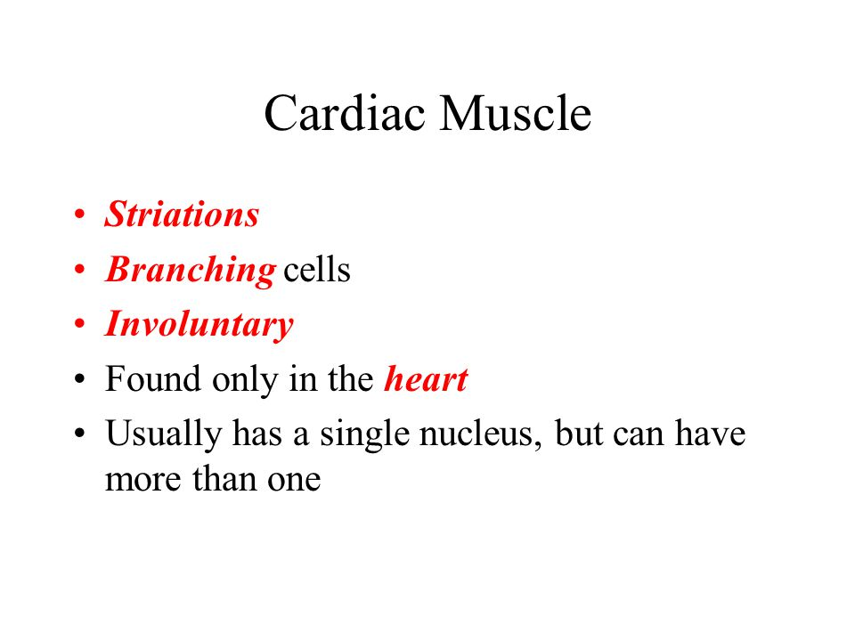 Cardiac Muscle Striations Branching cells Involuntary
