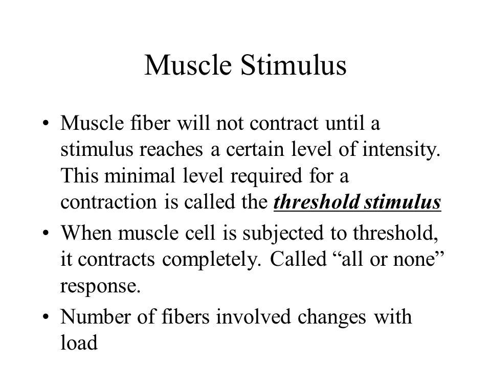 Muscle Stimulus
