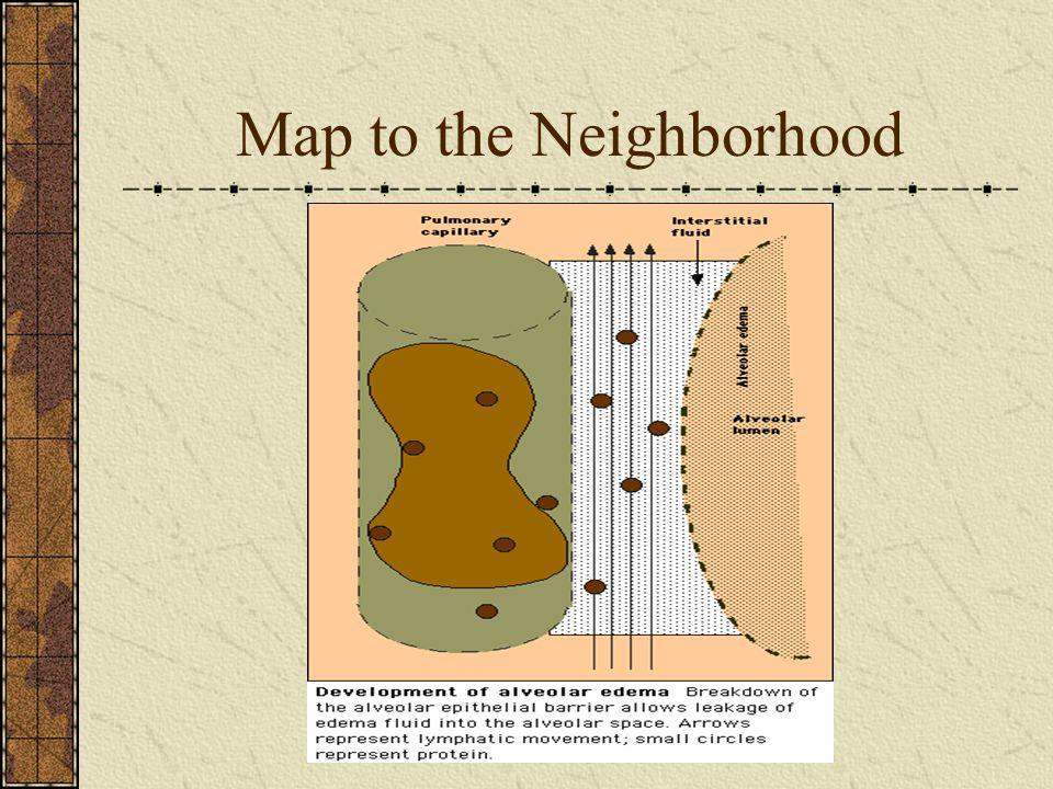 Map to the Neighborhood