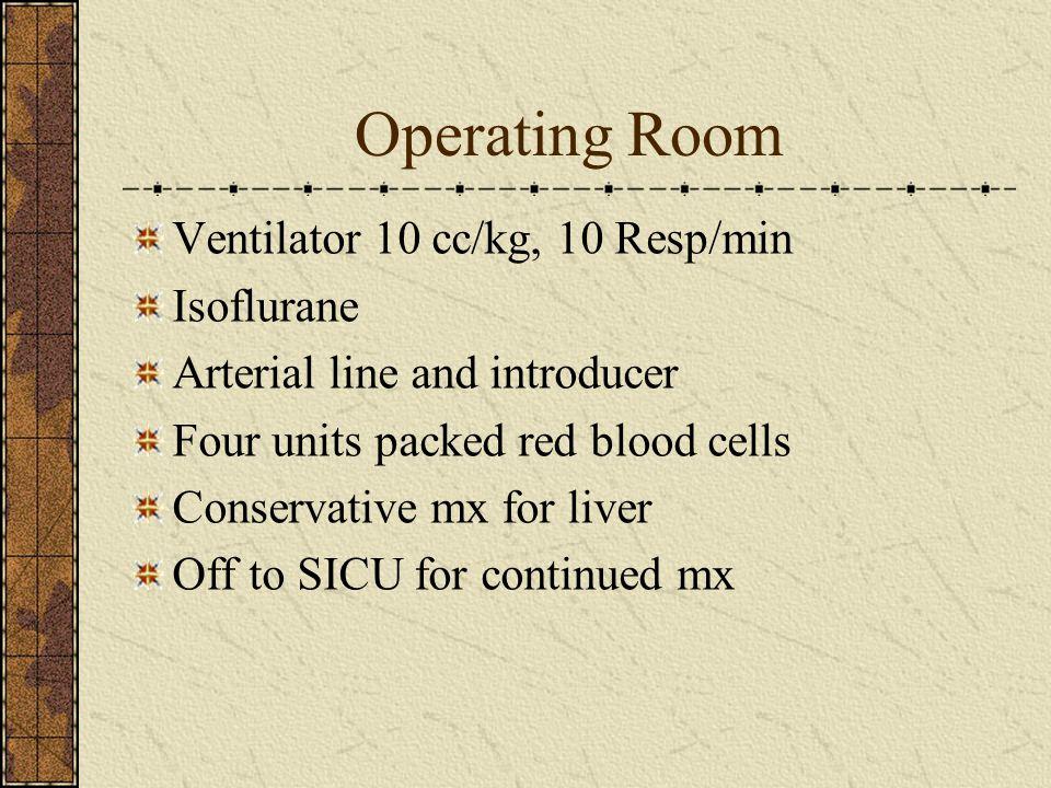 Operating Room Ventilator 10 cc/kg, 10 Resp/min Isoflurane