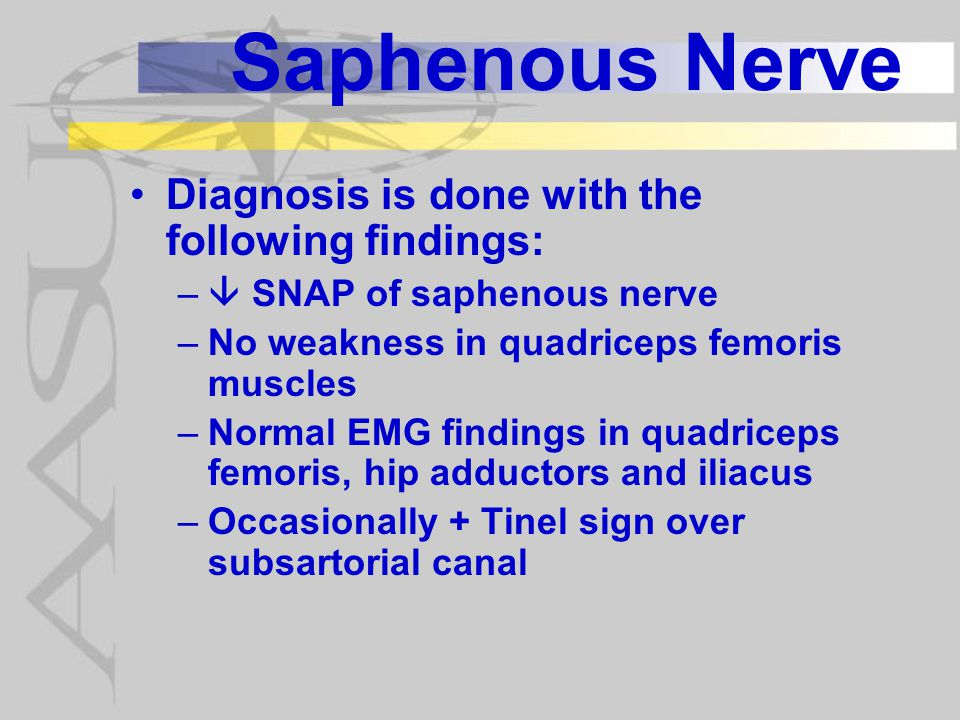 Saphenous Nerve Diagnosis is done with the following findings: