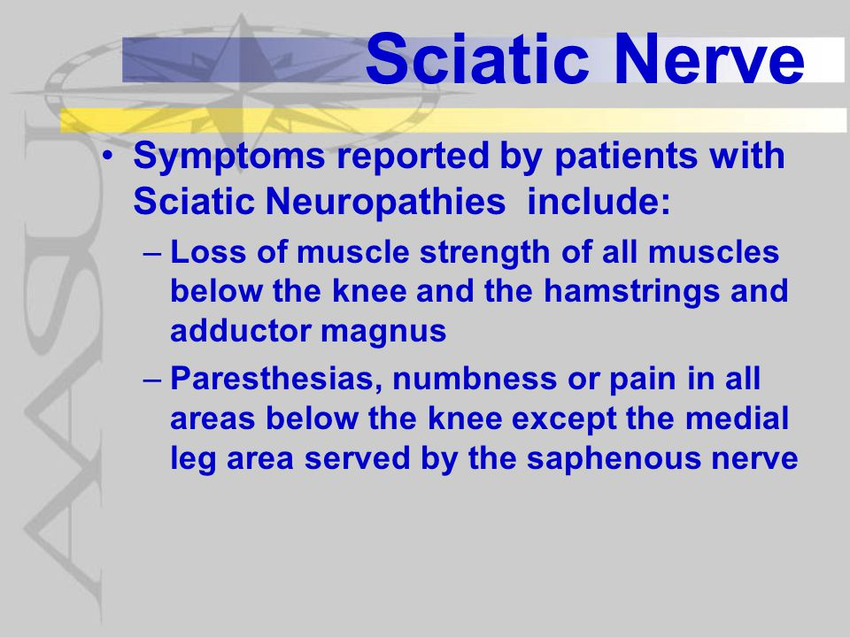 Sciatic Nerve Symptoms reported by patients with Sciatic Neuropathies include: