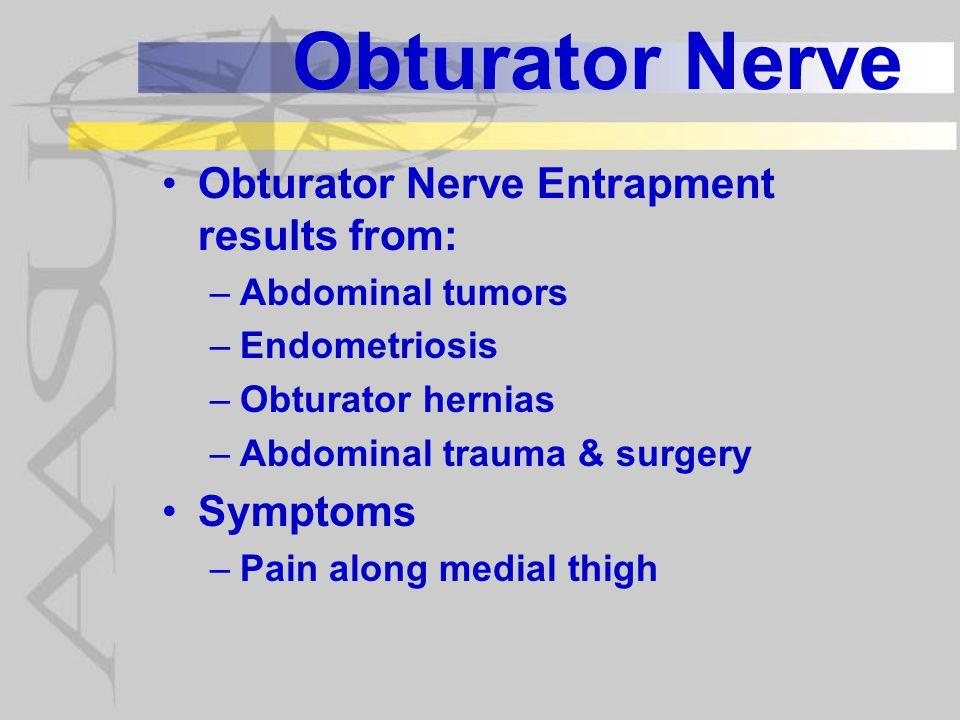 Obturator Nerve Obturator Nerve Entrapment results from: Symptoms