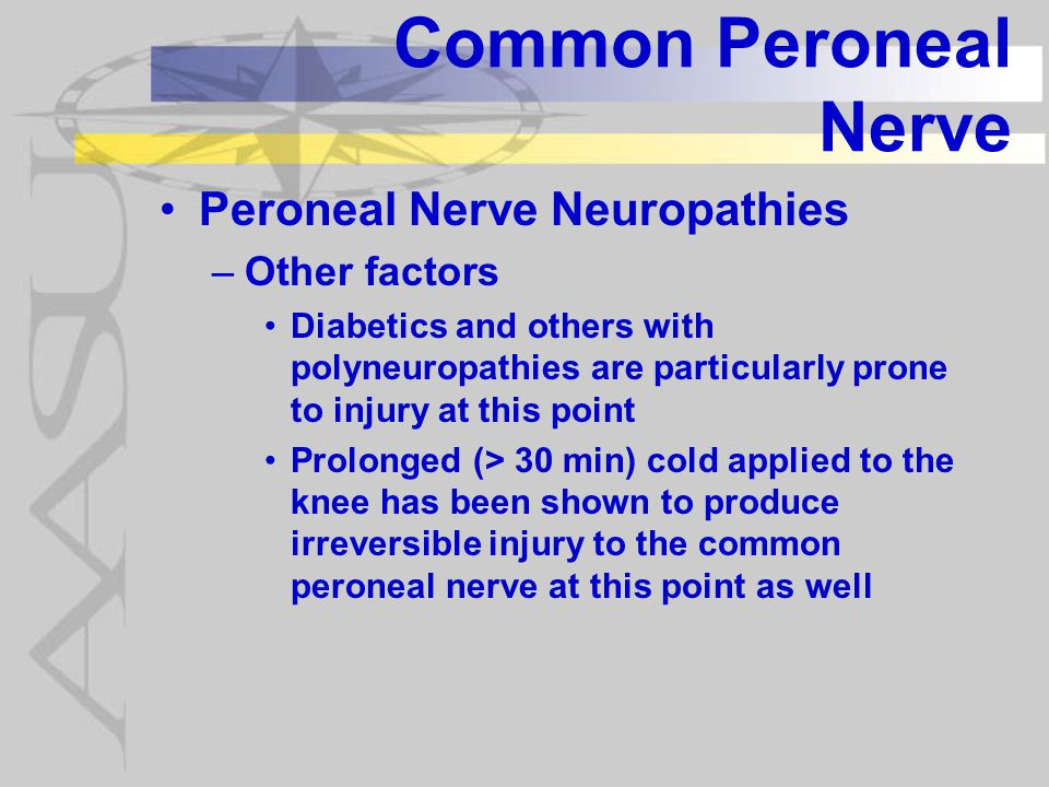 Common Peroneal Nerve Peroneal Nerve Neuropathies Other factors