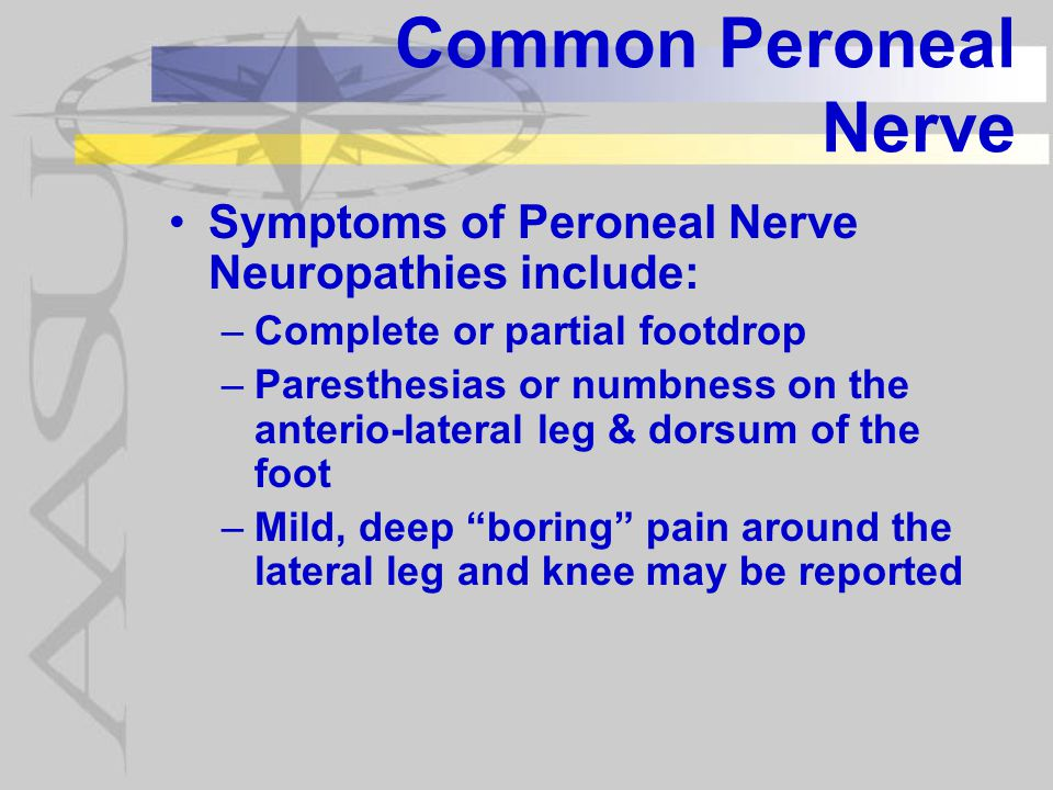 Common Peroneal Nerve Symptoms of Peroneal Nerve Neuropathies include: