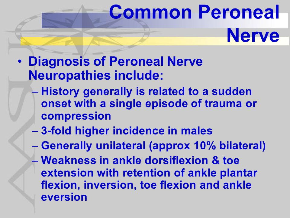 Common Peroneal Nerve Diagnosis of Peroneal Nerve Neuropathies include: