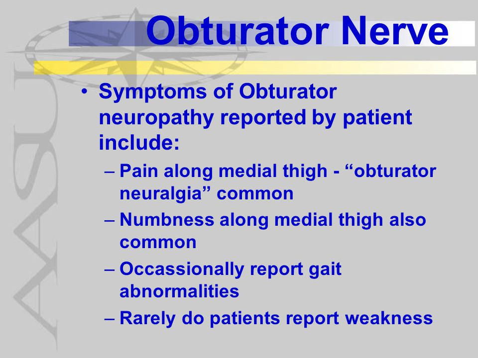 Obturator Nerve Symptoms of Obturator neuropathy reported by patient include: Pain along medial thigh - obturator neuralgia common.