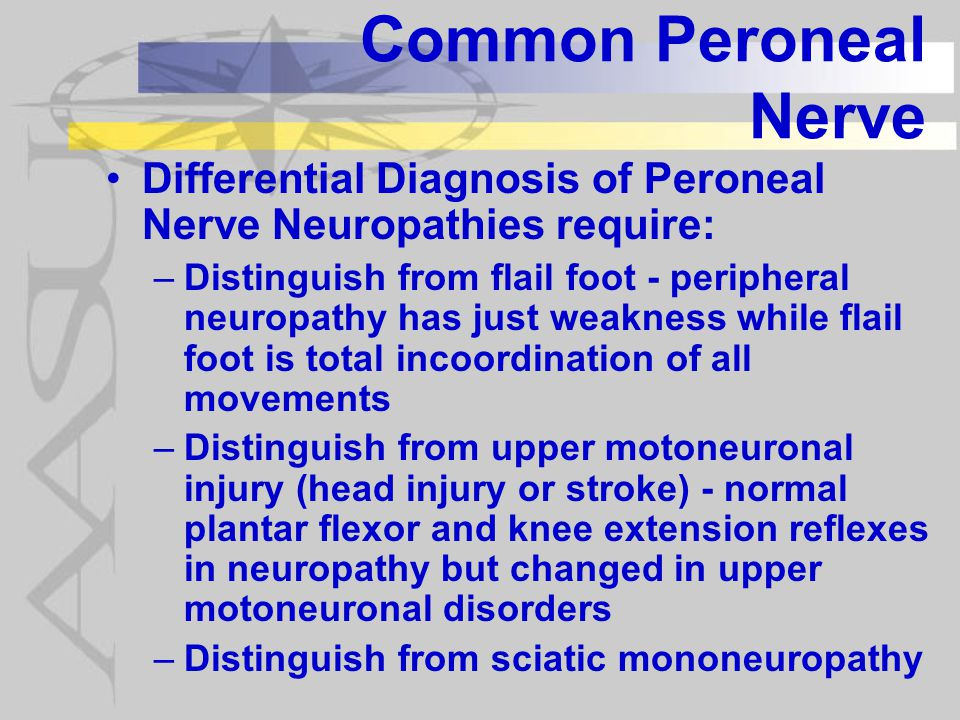 Common Peroneal Nerve Differential Diagnosis of Peroneal Nerve Neuropathies require: