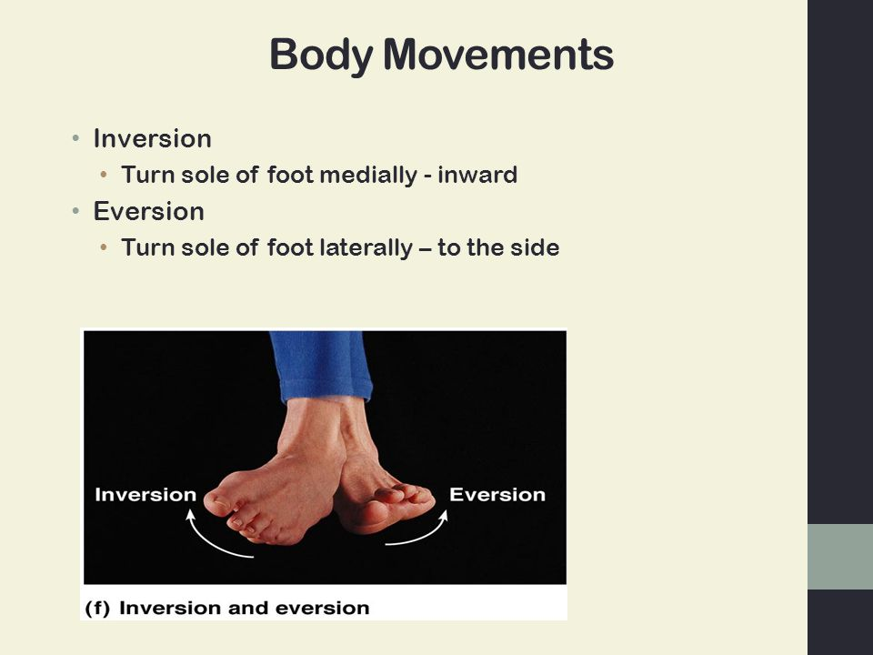 Body Movements Inversion Eversion Turn sole of foot medially - inward