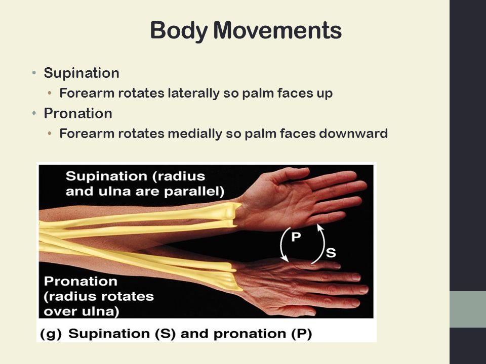 Body Movements Supination Pronation