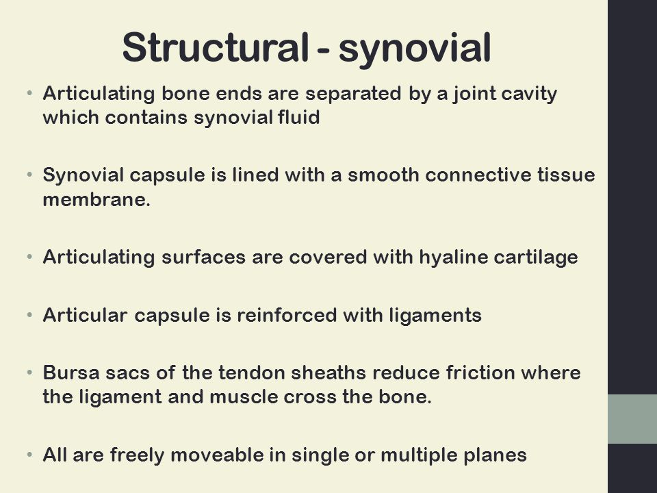 Structural - synovial Articulating bone ends are separated by a joint cavity which contains synovial fluid.