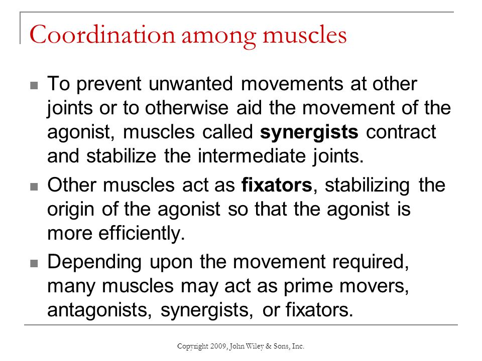 Coordination among muscles