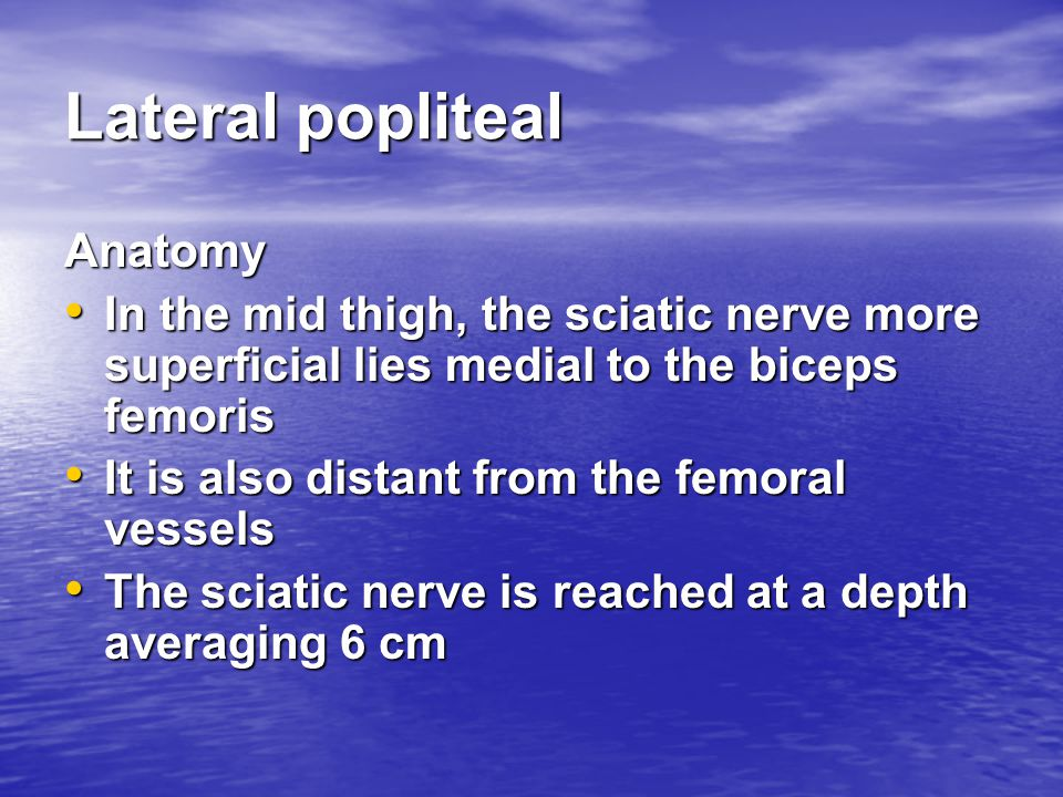 Lateral popliteal Anatomy