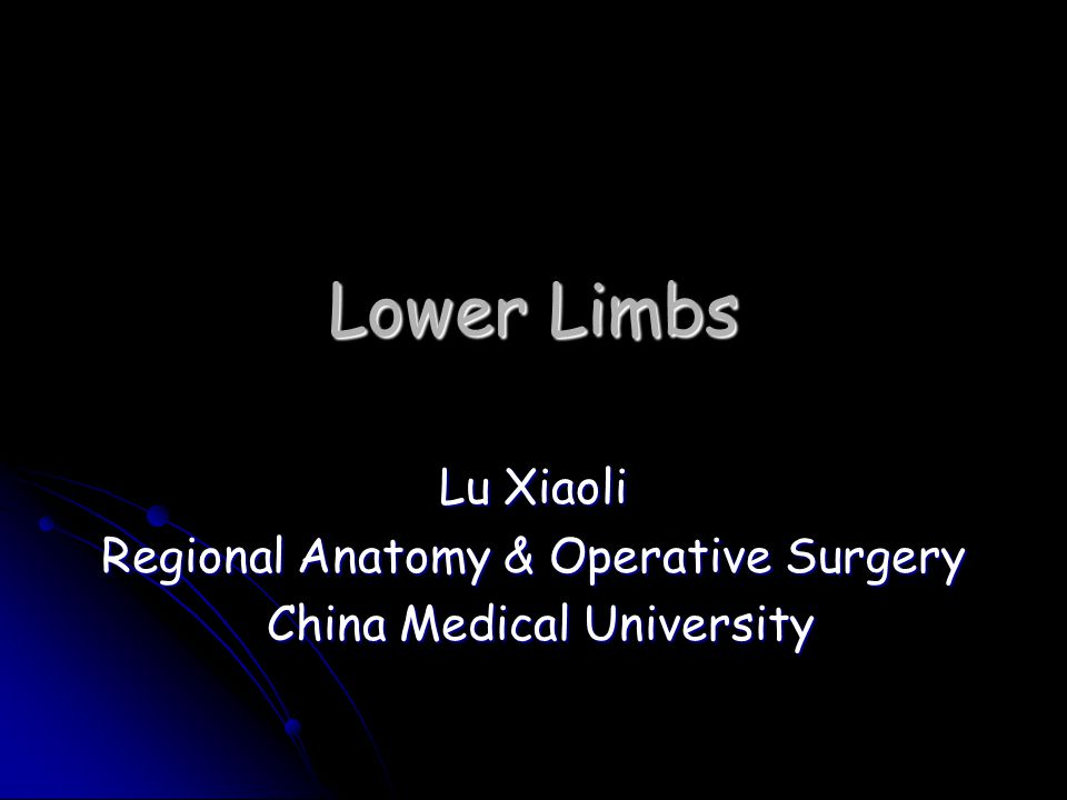 Lower Limbs Lu Xiaoli Regional Anatomy & Operative Surgery
