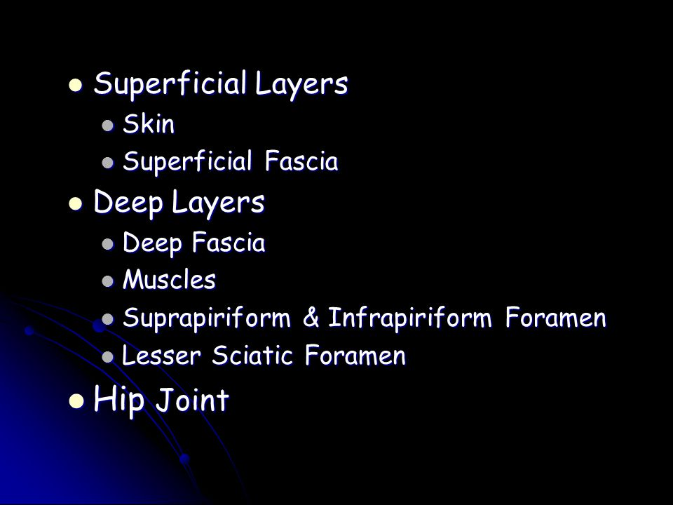 Hip Joint Superficial Layers Deep Layers Skin Superficial Fascia