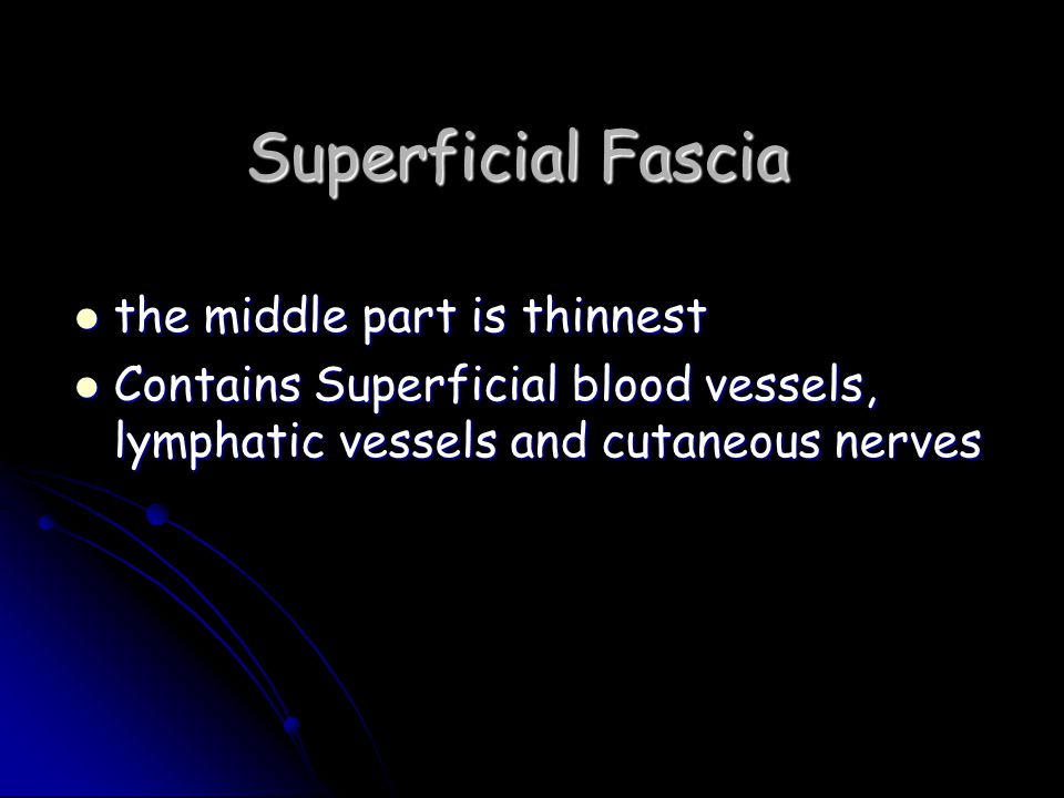 Superficial Fascia the middle part is thinnest