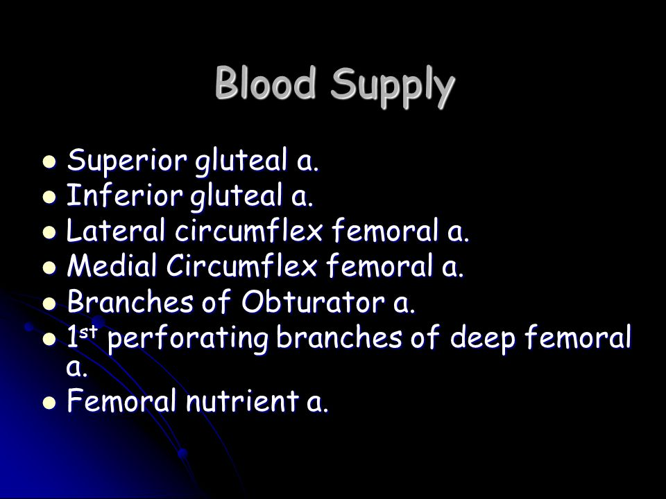 Blood Supply Superior gluteal a. Inferior gluteal a.