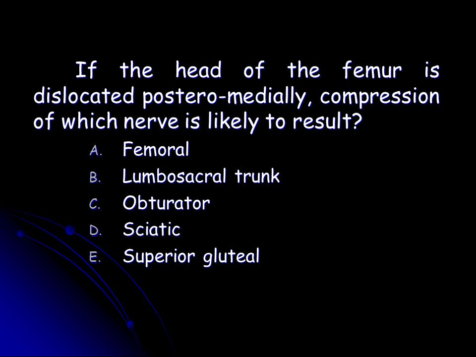If the head of the femur is dislocated postero-medially, compression of which nerve is likely to result