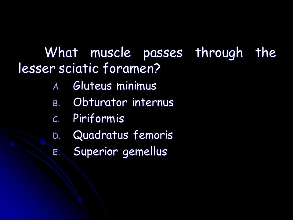 What muscle passes through the lesser sciatic foramen
