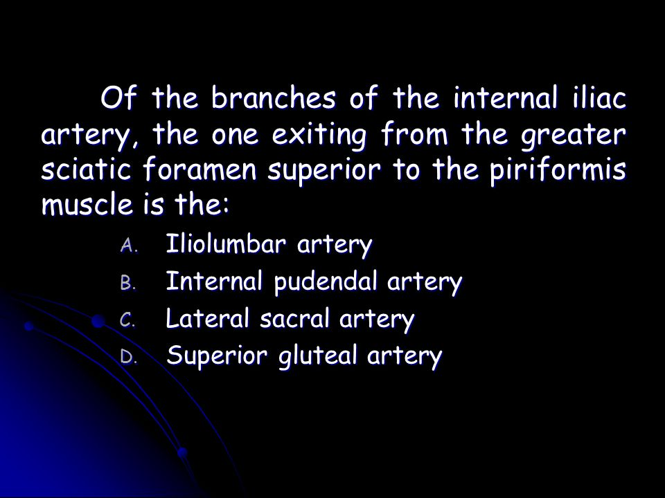 Of the branches of the internal iliac artery, the one exiting from the greater sciatic foramen superior to the piriformis muscle is the: